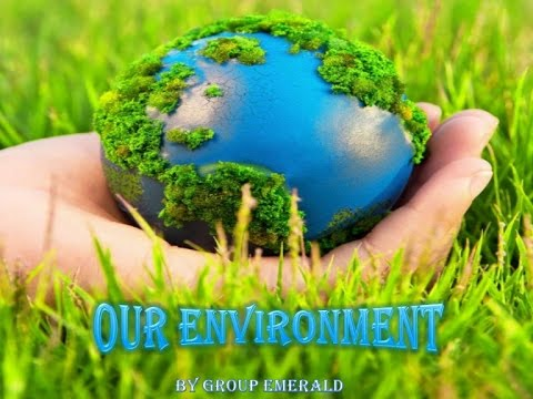 EC1040 Dynamos Our Environment: The Big Picture