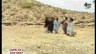 Pash dance