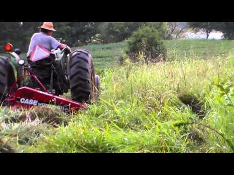 IH 1300 mower mowing 9-9-14 - YouTube