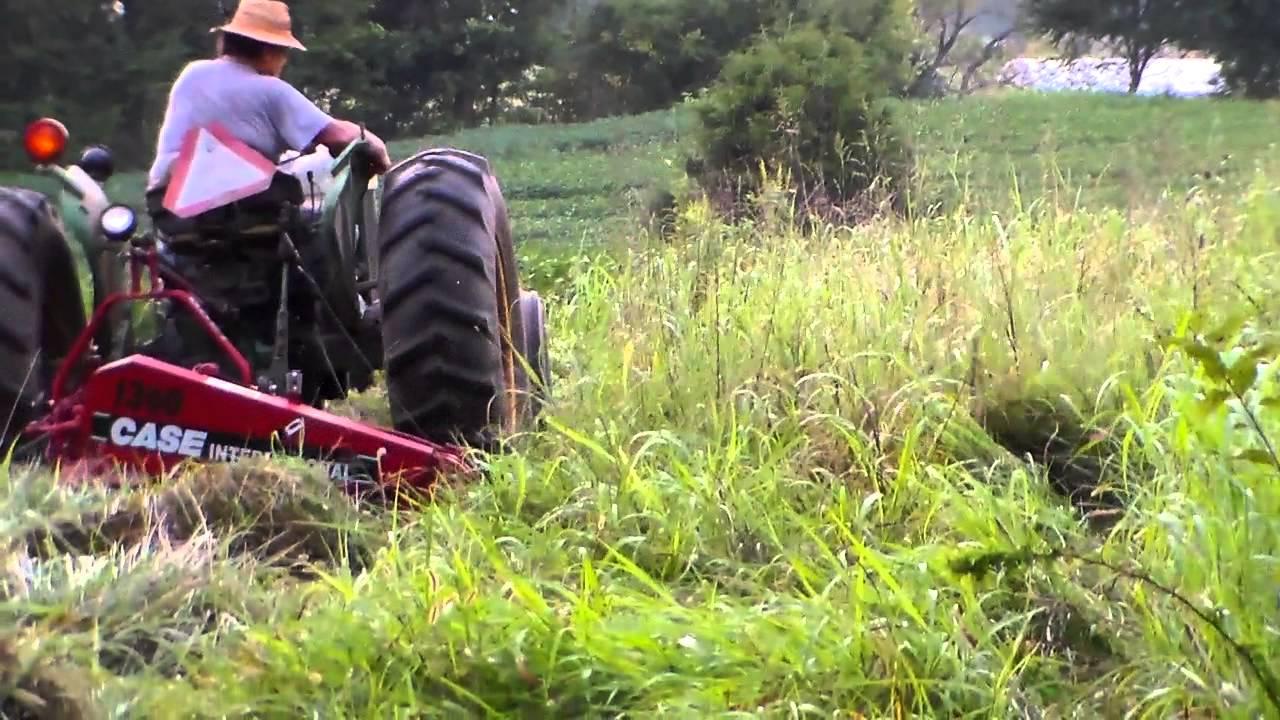 IH 1300 mower mowing 9-9-14