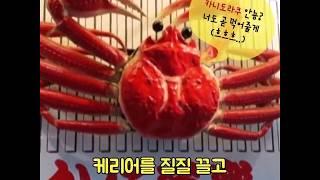 위大한 그녀의 나 홀로 오사카 혼밥혼술 여행기 1탄