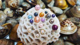 So wonderful! This ugly shellfish grows perfect pearls. Gems, diamonds, jewelry 宝石,珠宝,珍珠