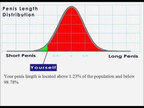 Interactive penis length statistics.