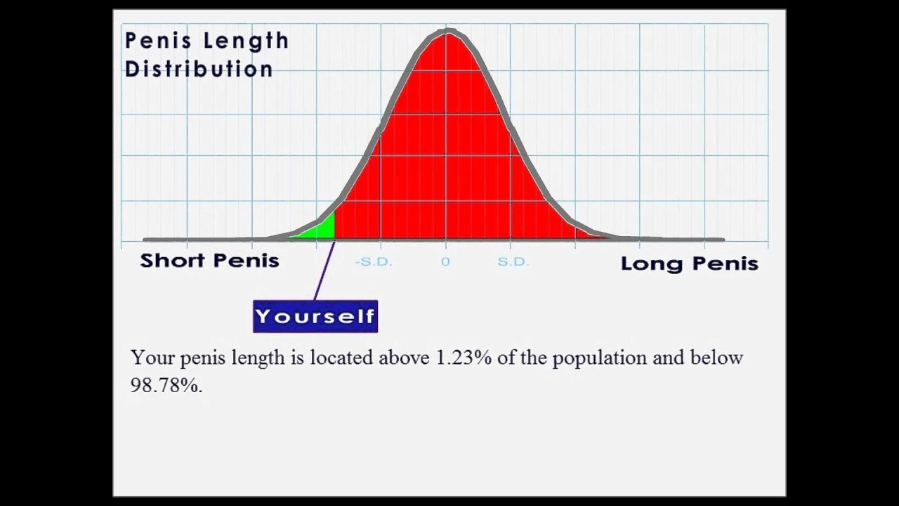 and statistics size Penis