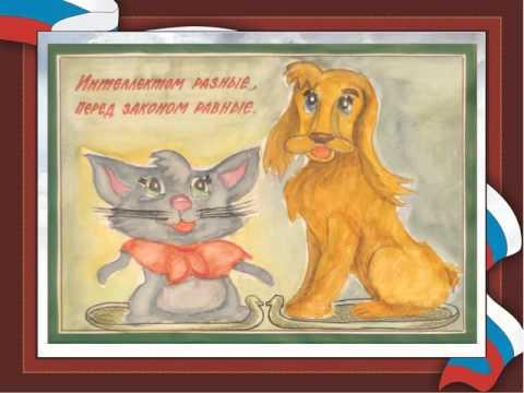 видео: Конституция РФ глазами детей