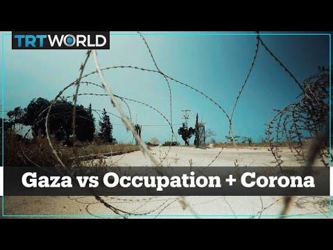 Coronavirus in Gaza