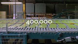 Johnson Tiles: The Manufacturer