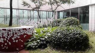 2018.07.01 비오는 날 일산암센터 2층 정원