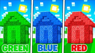 Minecraft But You Can Only Use 1 COLOR!