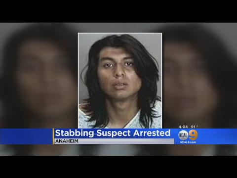 Man Accued Of Stabbing 4 Relatives In Anaheim