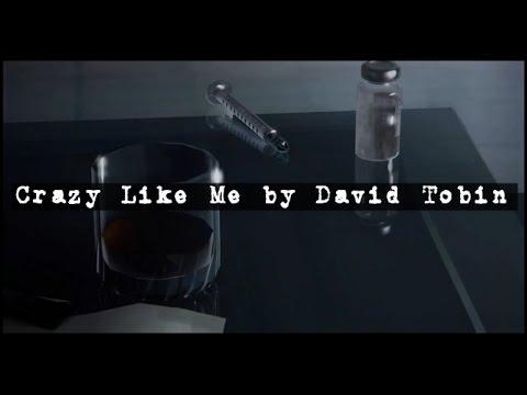 Life Is Strange Episode 5: Dark Room Music (Crazy Like Me by David Tobin)