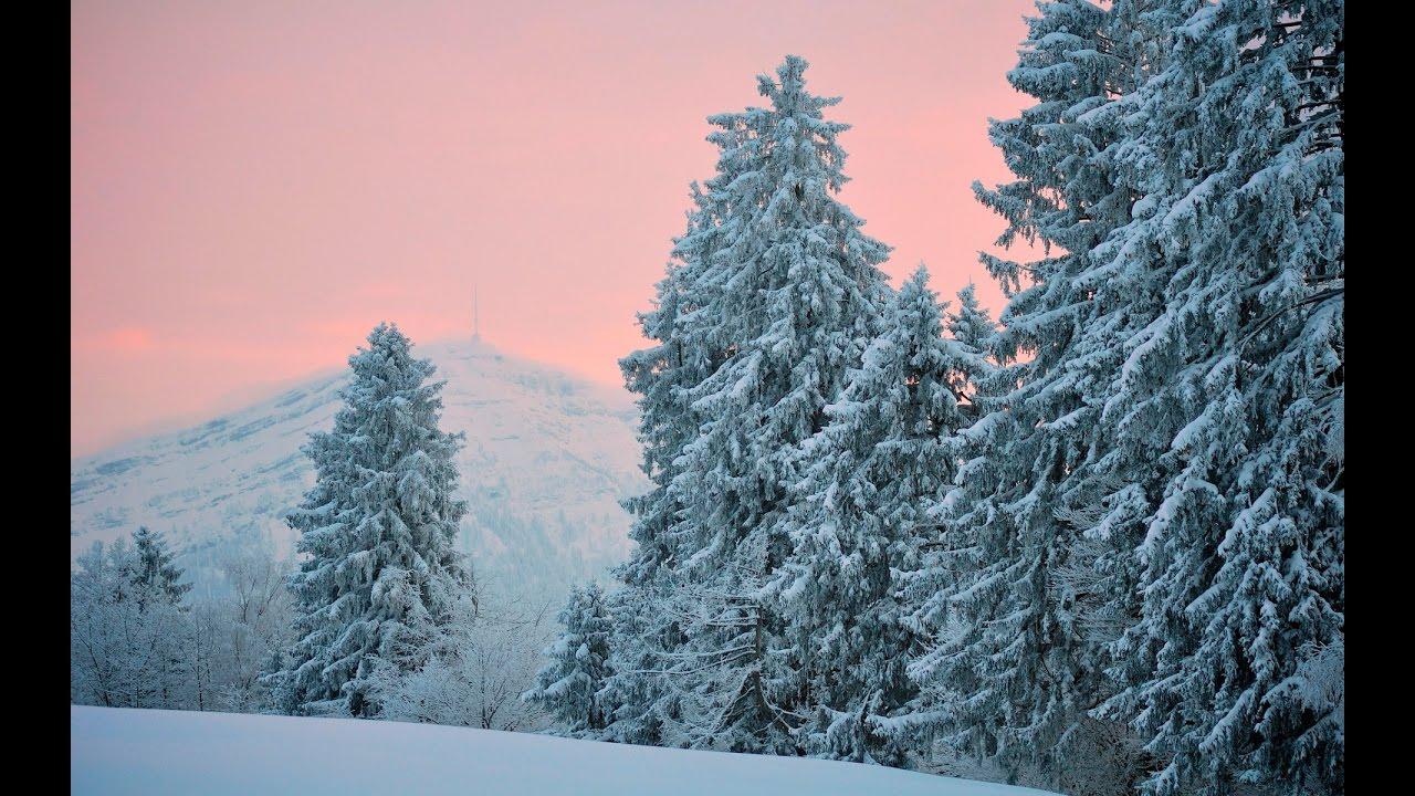 Скачать звуки зимы в лесу