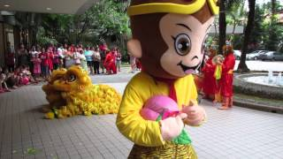 2016 Chinese New Year Lion Dance featuring Monkey Kings (Part 2)