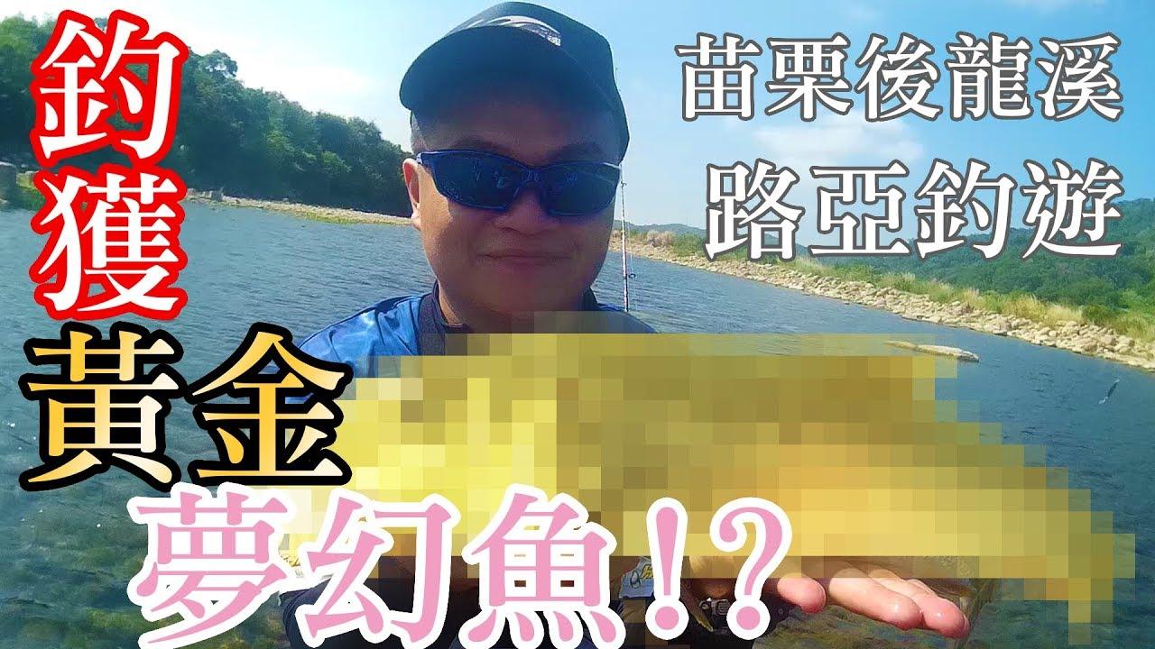 【路亞】釣獲!後龍溪路亞夢幻魚!? FT.寶島漁很大 阿克 捲仔/溪哥/馬口魚/前打/落入/磯釣 - YouTube