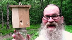 7 Easy Steps to Best Simple Homemade Carpenter Bee Trap