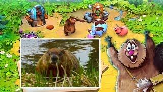 ► Мультики для маленьких животные Веселая ферма [#4]
