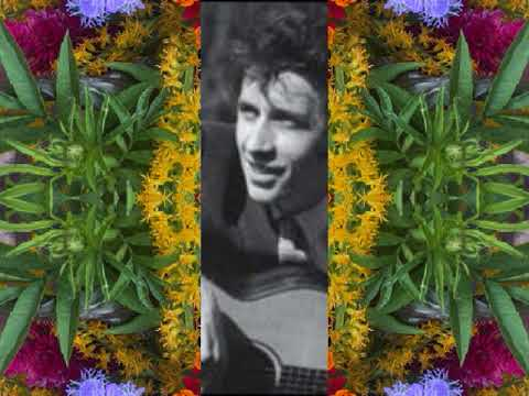 The Blackbirds of Mullamore (by Bert Jansch live in Berkeley, CA 1990)