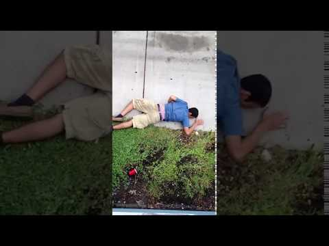 Drunk College Kid Belly Flops Off Roof Onto Concrete