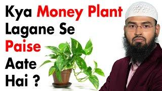 Money Plant Lagane Se Kya Paise Aate Aur Tawhaam Ka Kya Mamla Hai By Adv. Faiz Syed