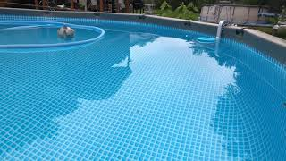 How to vacuum a intex above ground pool