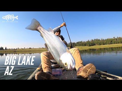 Fishing At Big Lake AZ