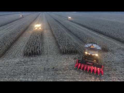 Combine harvester competition/Соревнование комбайнов 08-09.11.2017