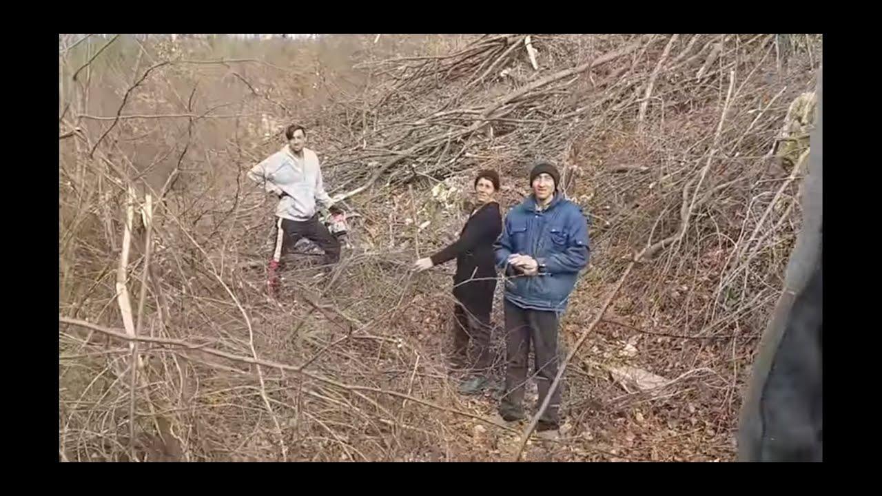 I-am prins în fapt și cu drujba în acțiune ! Au ras pădurea ! (1P)