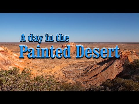 A Day In The Painted Desert