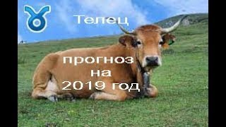 ТЕЛЕЦ 2019 год от J Dzay