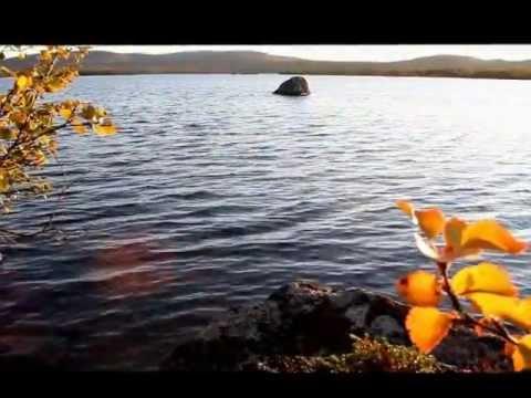 Видео — Природа Заполярного края