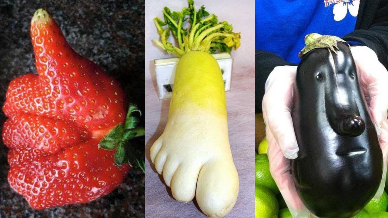 Weird Shaped Fruits 11