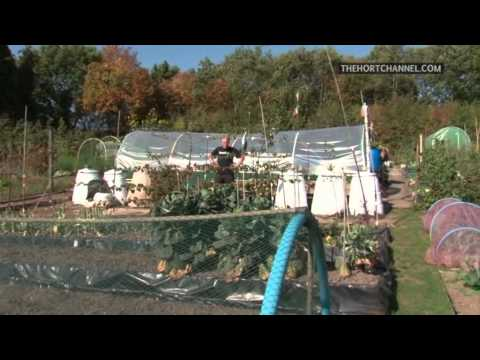 How to make compost within a month with Mick Poultney (227)