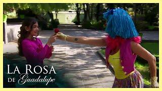 El club de las flores   La Rosa de Guadalupe