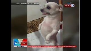 Balita Pilipinas Ngayon rounds up the top stories from around the P...