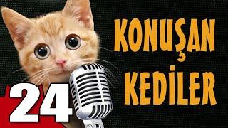 Konuşan Kediler 24 - En Komik Kedi Videoları