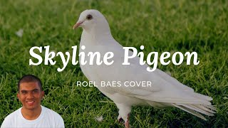 Skyline Pigeon (Audio Only) - Roel Baes Cover