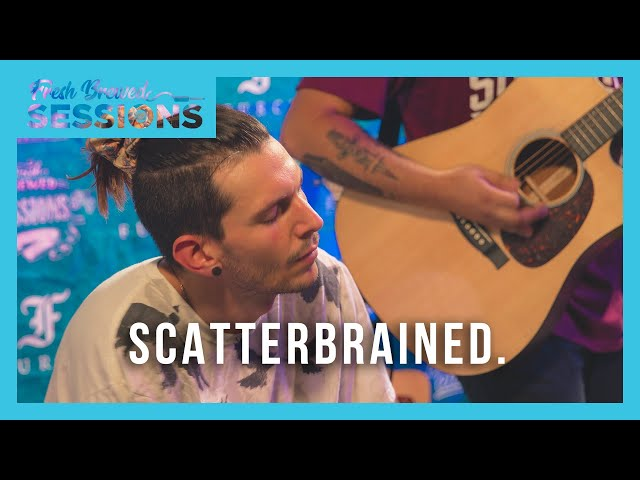 Fresh Brewed Sessions | Scatterbrained | Snowy Nights