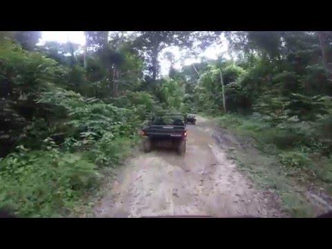 GABON: Safari en buggy por la selva Centro Africana de Gabón
