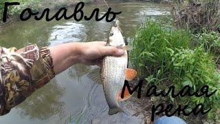 Ловля голавля на малой реке