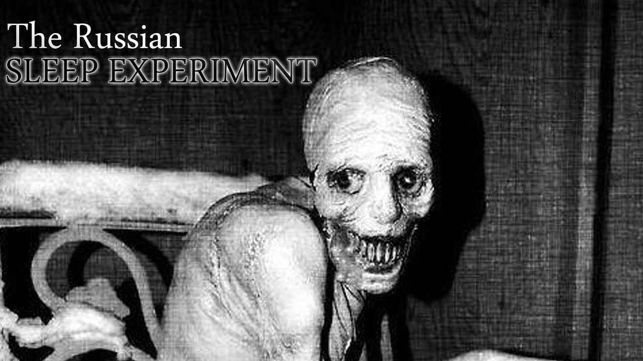 the russian sleep experiment official short film youtube