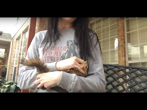 THE MOST CUDDLY WILD SQUIRREL EVER!