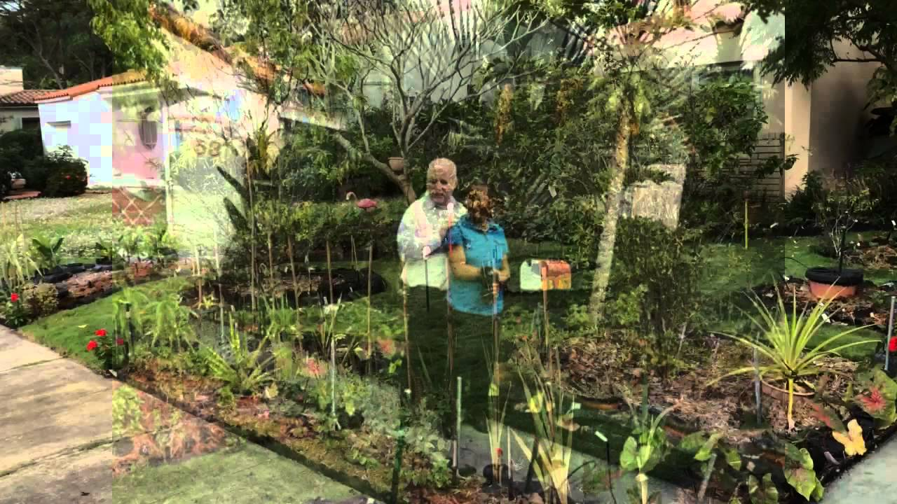 Raised Vegetable Garden Pictures
