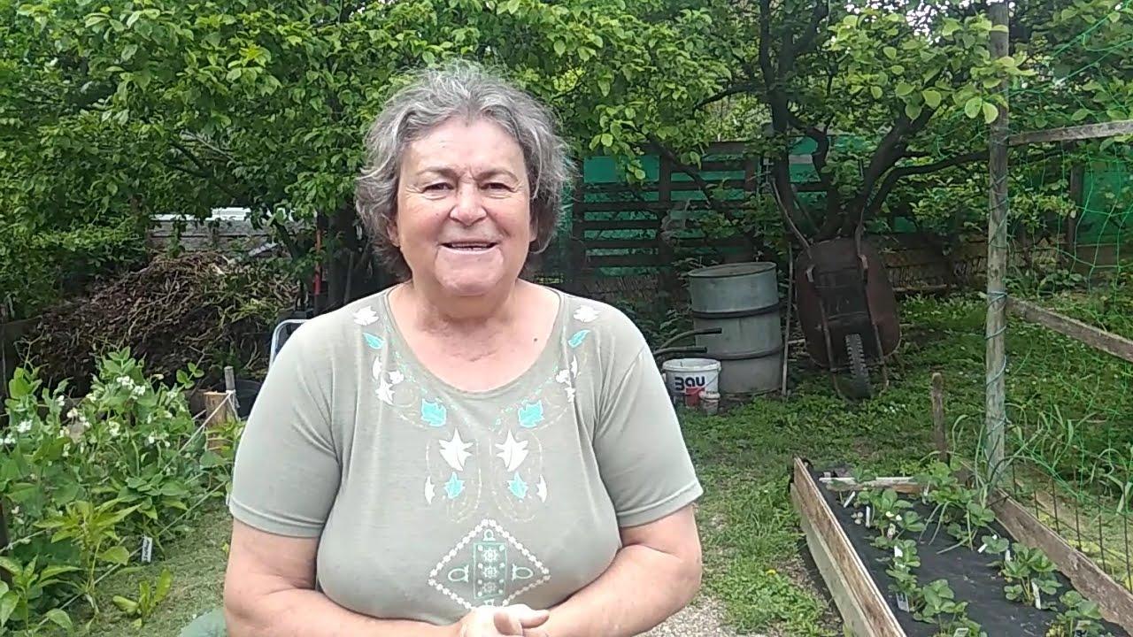 Jutka mama kertje május végén