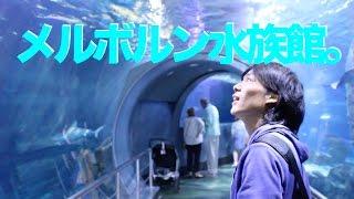 メルボルンの水族館に行ってみた。From UEPどうにかなるの旅。(41日目前半)