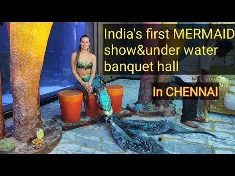VGP Marine kingdom  indians first mermaid show in chennai  under water tunnel aquarium in chennai