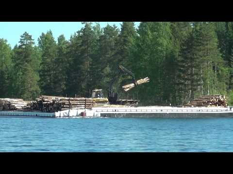 Ponsse forest machine loading a timber moving ferry