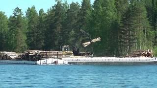 Video Ponsse forest machine loading a timber moving ferry download MP3, 3GP, MP4, WEBM, AVI, FLV November 2017