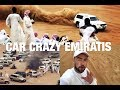 Awafi - Craziest Place In The UAE:  How Emiratis Have Fun عوافي هو اكثر مكان جنونا في الامارات ؟