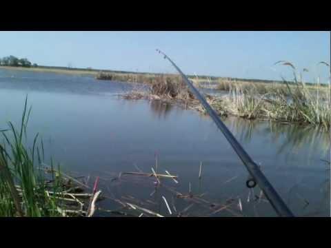 летняя рыбалка на судака видео - 2012-05-16 10:54:48