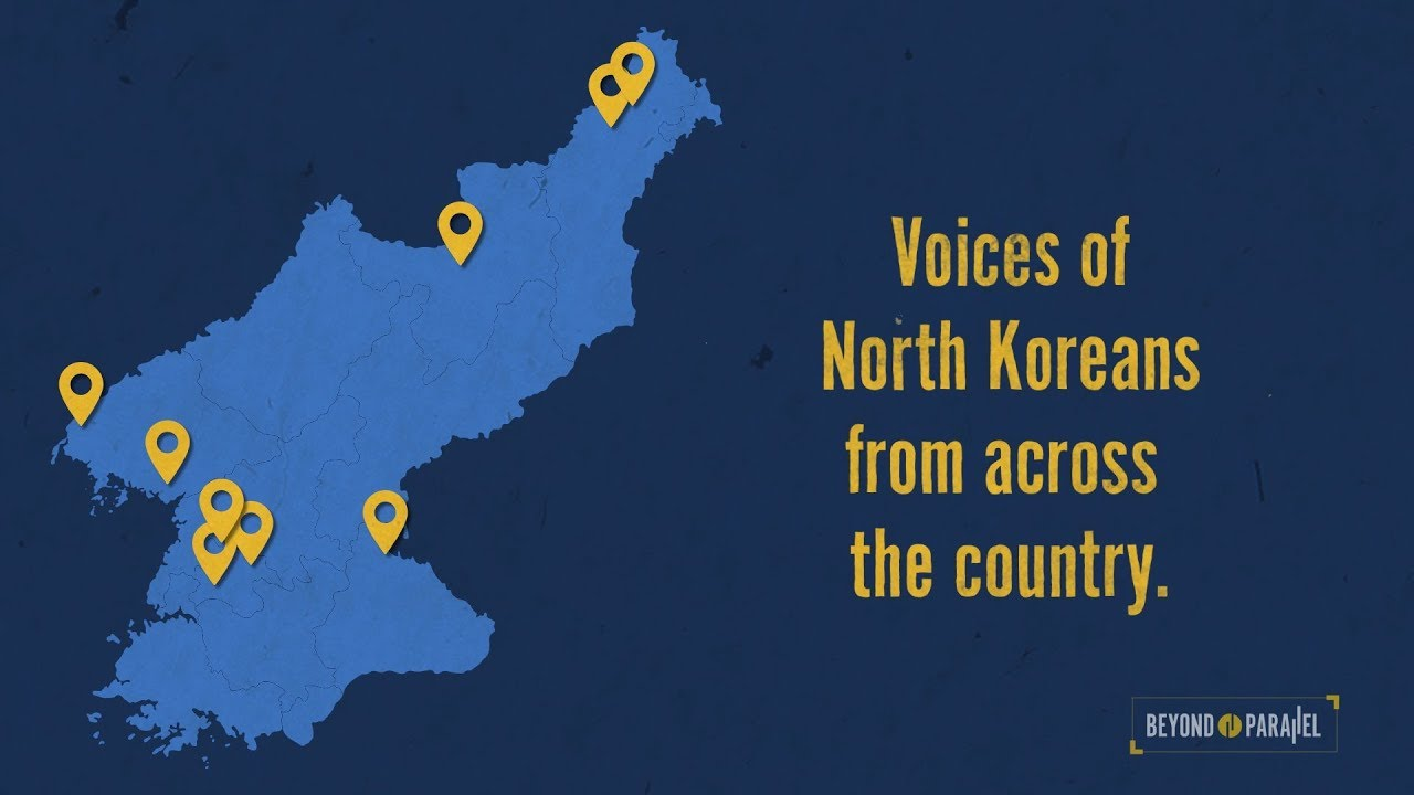 A View Inside North Korea: Surveys of Actual North Korean Citizens